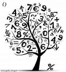 پیش نیازهای اساسی یادگیری ریاضی