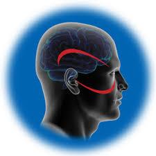 یکپارچگی حسی و تمرینات درمانی مناسب